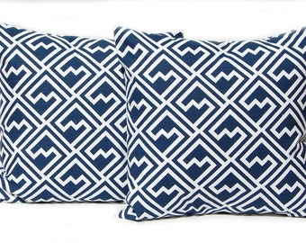 Throw Pillow Cover -  Navy Blue Pillow Cover - One Decorative Pillow Cover - Navy Cushion Covers 20 x 20 Inches - Modern Shakes Print