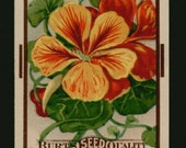 1910s Tall Nasturtium Flower Garden Antique Seed Pack Art Unused