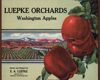 1950 Luepke Orchards Big Red Apples Scarce Lithograph Crate Label Yakima WA