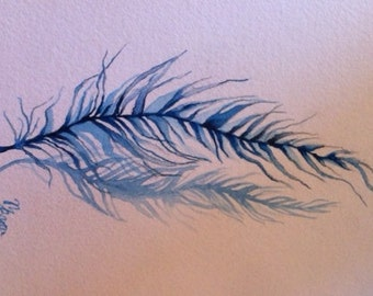 Watercolor/Ink-Realism-Blue Feathers