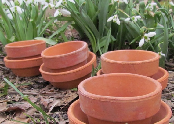 Mini clay pots lot of 10 small 3 flowerpots with 10 by for Small terracotta pots crafts