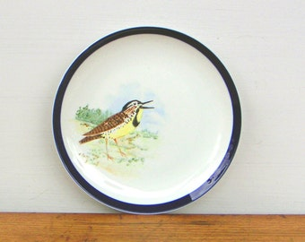 Meadowlark Vintage Hand Painted Bird Plate