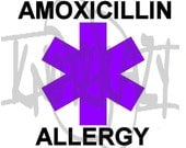 Purple Amoxcillin Allergy Medical Alert ID ALLOY Charm on 550 Paracord Survival Strap Bracelet with Plastic Contoured Side Release Buckle
