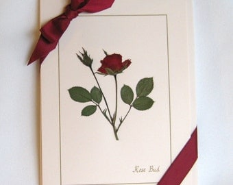 Rose Card Set, Dried Pressed Flowers on Pink Cards, Romantic Gift For Her, Real Flowers on Blank Greeting Cards