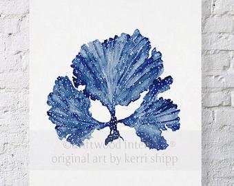Seaweed II in Denim Blue Watercolor Print 11x14 - Sea Coral Art Print - Sea Fan Art Print - Coral art by Kerri Shipp