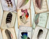 FEATHERED - Digital Collage Vintage Bird Feather 2.5x3.5 inch Scrapbooking Paper Printable Background Craft Supply Tag Journaling Ephemera
