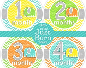 Baby Monthly Stickers FREE Baby Month Milestone Sticker Baby Month Stickers Bodysuit Stickers Baby Boy Elephant Turquoise Yellow Chevron