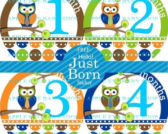 Baby Month Stickers FREE  Baby Month Milestone Sticker Baby Monthly Stickers Baby Bodysuit Sticker Photo Props Baby Boy Owls Blue Brown