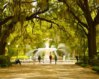 Savannah GA Photography, Savannah Art, Forsyth Park, Through the Trees, Savannah Georgia
