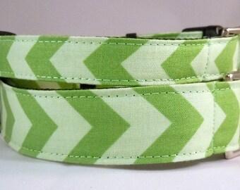 Dog Collar, Martingale Collar, Cat Collar - All Sizes  - Green Chevron