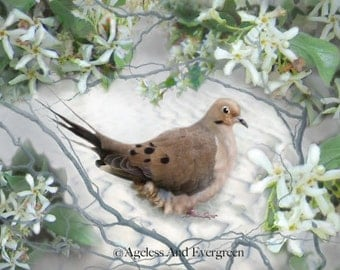 Oh Gentle Dove...Digital Collage, Giclee Print,  Fine Art Print, Home Decor, Dove