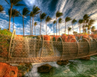Atlantis Rope Bridge and Palm Trees, Travel Photography, Bahamas, Blue Sky, Morning, Caribbean Landscape photograph, Exotic, Art Print