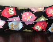 Colorful Owl Pencil Case