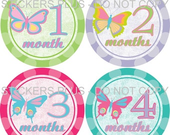 Baby Girl Month Stickers Plus FREE Gift Butterflies Butterfly Pastels  PRECUT Monthly Baby Stickers Photo Prop 1-12 or 13-24 months