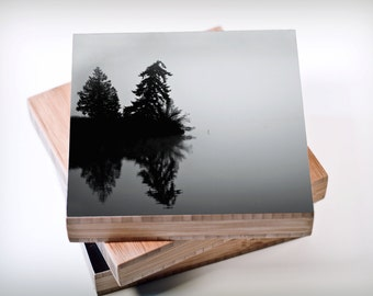Bamboo Block, trees, black and white Nw, living room, wall art, wood, print, original photography, pacific, nautical, boat, water, evergreen