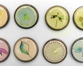 Push Pins or Magnets - Dragonfly