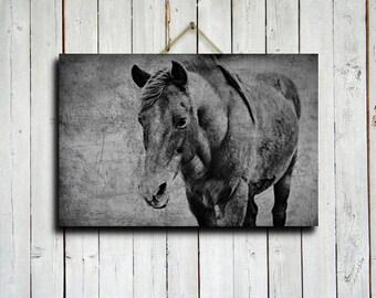 "Black and White Horse - 16x24"" canvas - Horse decor - Horse photography - Horse art - Black and White decor - Horse decoration"