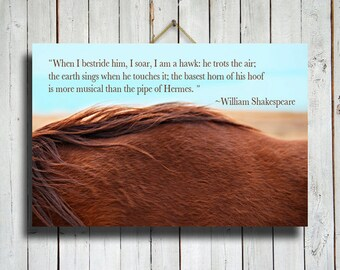 "Red Mane - Horse photography - Horse Quote - Horse Fine Art Photography - Canvas print 16x24"" - Blue and red decor - Horse decor - Horse art"