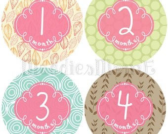 Monthly Baby Girl Stickers, Baby Month Stickers, Monthly Bodysuit Sticker, Baby Shower Gift, Milestone Sticker, Monthly Stickers (Isabel)