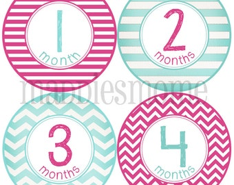 Baby Girl Month Stickers, Monthly Baby Stickers, Milestone Stickers, Baby Month Stickers, Monthly Bodysuit Sticker (Penelope)
