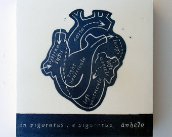 The Living Heart, Relief Print on Wood Panel, encaustic, anatomical heart, latin text, hand pulled print, original art