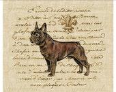 Vintage French bulldog fleur de lis ephemera Digital download image for transfer to fabric decoupage paper burlap tote bags pillows No. 494