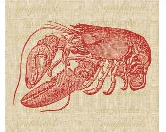 Red lobster instant clip art Digital download image for iron on fabric transfer burlap decoupage pillows tote papercraft Item No. 1866