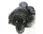 "Charcoal custom pet portrait / 11"" x 15"" / hand drawn / charcoal / drawing / portrait of your pet."