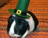 St. Patrick's Day leprechaun hat. Guinea pig costumes by la Marmota Café.