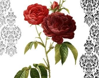 Illustration Art Damask Red Rose Digital Print Download File