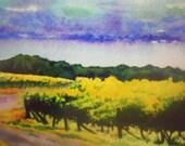 Summer Vineyard at Seneca Lake Giclee Print