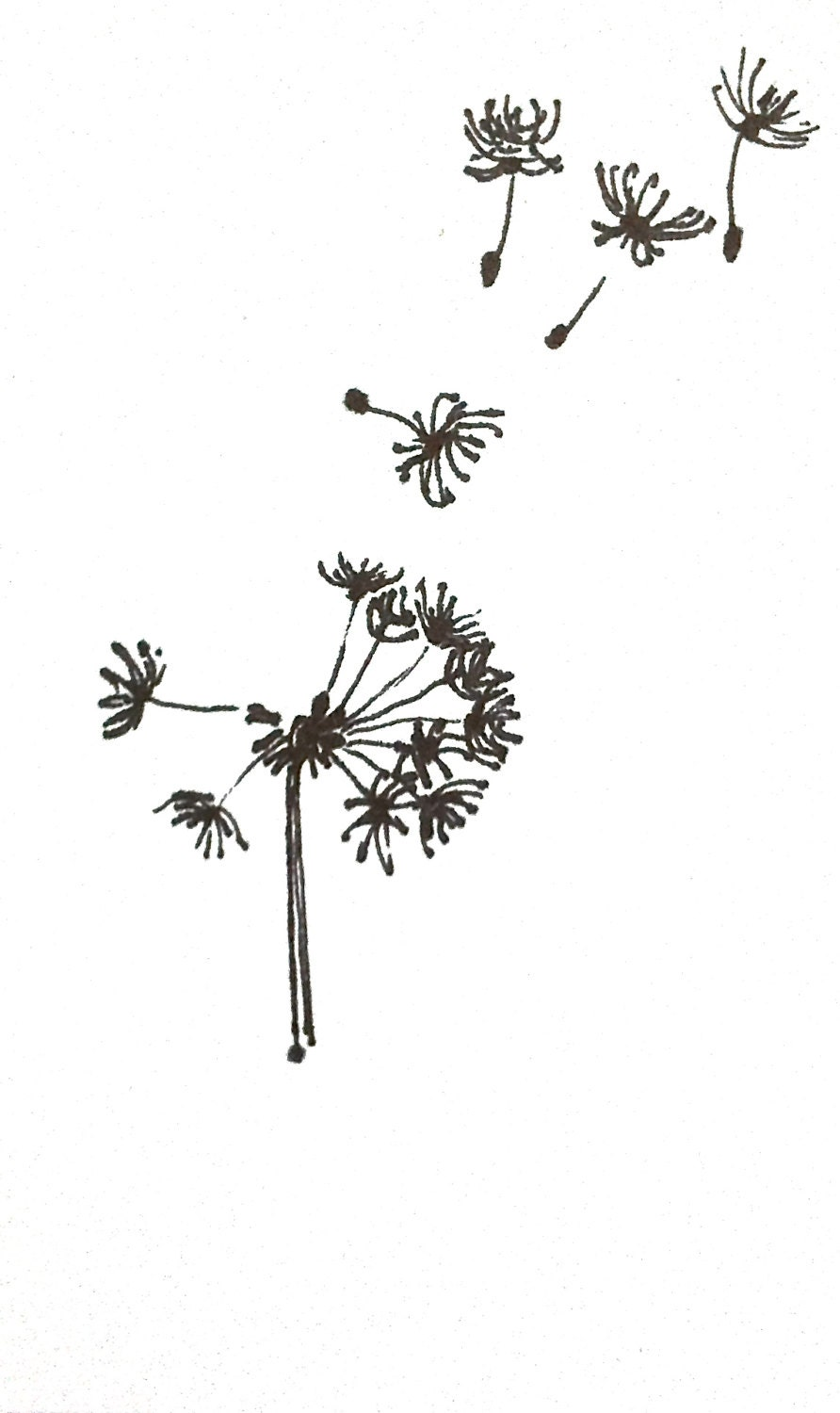 Dandelion Drawi... Harvest Clip Art Black And White