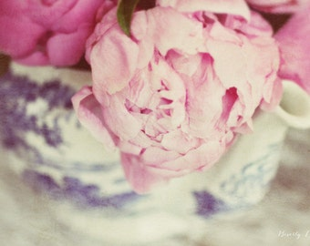 loved, pink, peony, flowers, blue, white, fine art photography