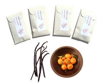 Scented Sachets Rich Citrus Cream Seed Packet Favors Fall Wedding Candle Thank You Hostess Orange Vanilla Aromatic Gift for Women Dreamsicle