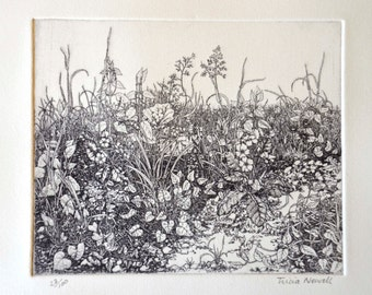 Limited edition etching 'Spring'