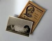Vintage photograph: Baby crawling portrait