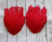 Red Nagorie Feather Pad Set of 2