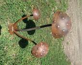Toadstools Garden Sculpture