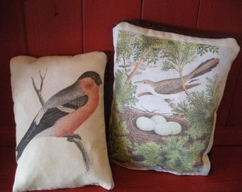 Set of 2 Decorative Bird Pillows