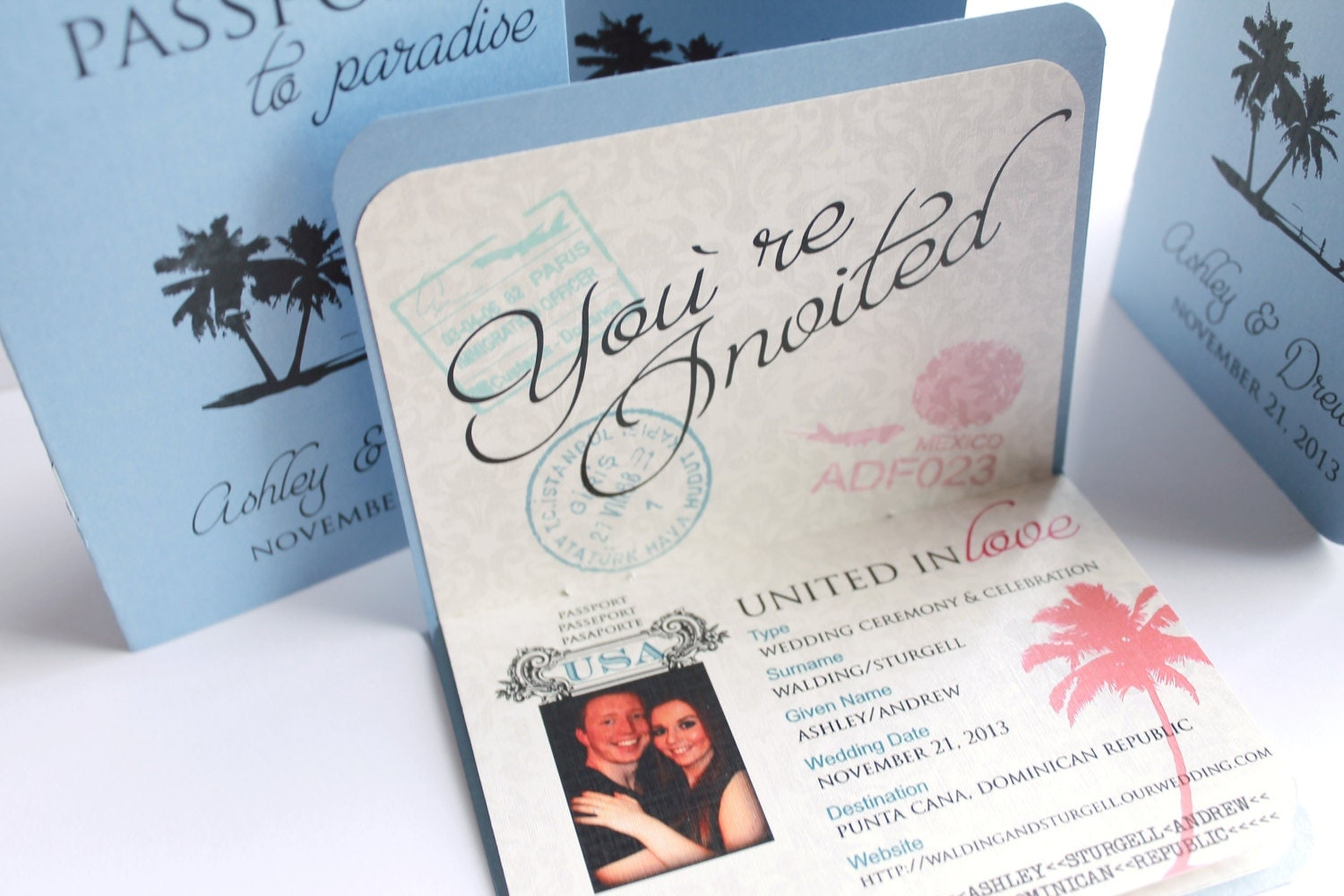 Unique And Customizable Passport Boarding By DivaGoneDomesticToo