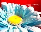 A Birthday Sunflower