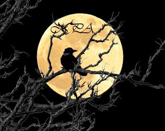 Crow against Full Moon Matted Picture A366