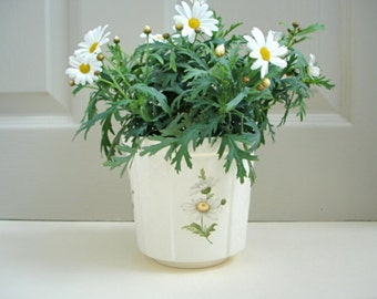 Cream Plant Pot - Cream Planter
