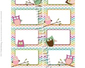 Owl Baby Shower Name Tags. Pink, Orange, Green and Aqua Chevron. Coordinates with Owl Party Package and Invitation.