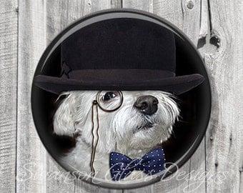 Pocket Mirror - Steampunk White Terrier - Photo Mirror - Compact Mirror Illustration Image - Gift under 5 - A68