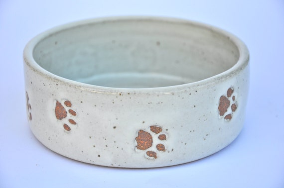 Dog Taking One Piece Of Food Out Of Bowl