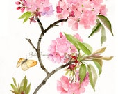 Flower watercolor Spring blossom and butterfly Floral Art Watercolor painting Original
