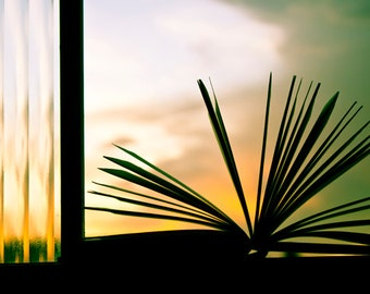 Book photography Digital Download Open book and Sunset Sun Rays Decorating Ideas Old books Library Art Gift Ideas Home Decor