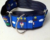 Super Mario Brothers martingale collar