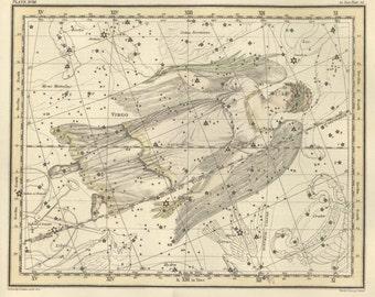 Constellation, Antique print, Moon, Constellation of the Virgo, 64